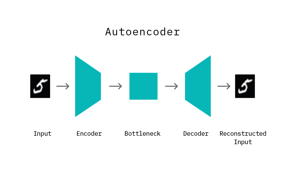 The components of an autoencoder.